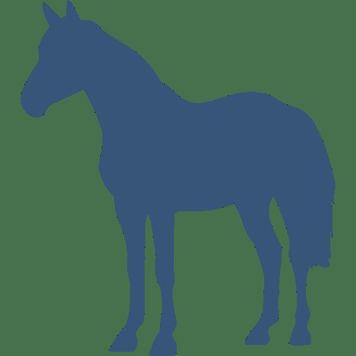 Horse picto bleu